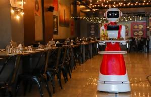 Meet Lexa, Robot waiter at Indian Swag