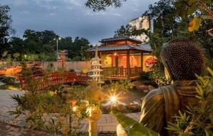 Glimpses from the Zen Garden inaugurated today at AMA