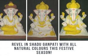 "We Found ""Shadu Clay"" Ganpati idols with Natural Colors"