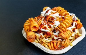 1st Time in INDIA Curly, Waffle Fries & more @Friessac