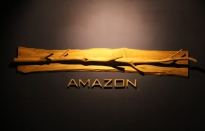 Unique interiors and lipsmacking food @Amazon: Aarya Grand