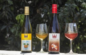 Summer Special and Unique #4: Rhythm Fruit Wines