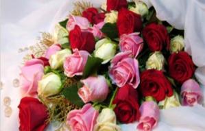 Flower world online | Gifting ideas