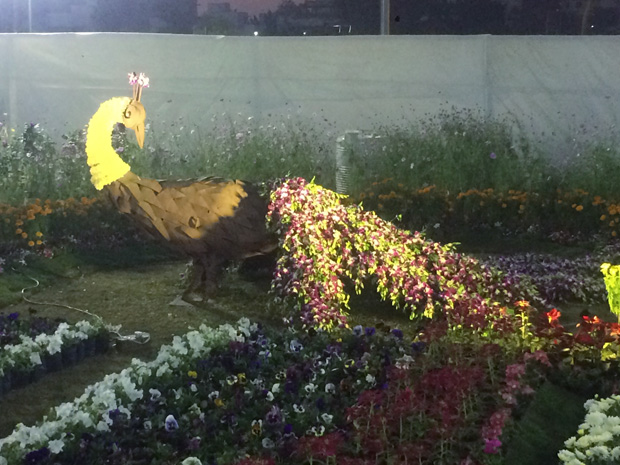Explore the Poetries Made with Flowers at Annual Flower Show
