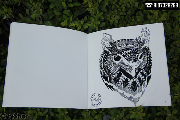 Doodles with Expressive Illustrations by Brushes N Strokes