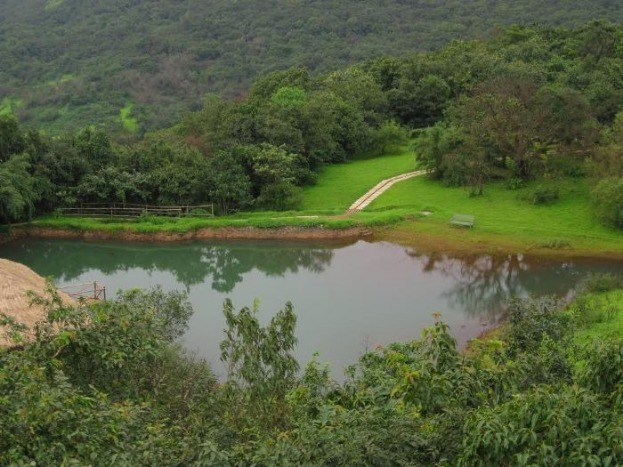 Unwind with an Eco-Stay at this Tree House Resort in Lonavla