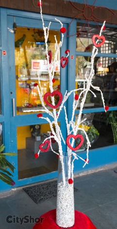 Pick out lovely Flowers this V-Day from IVY AURA