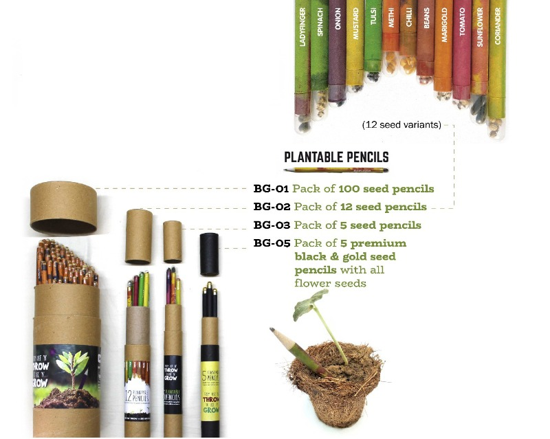 Grow plants out of your stationary | Gift Studio!