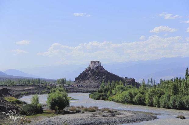 Explore Ladakh with Maroon Migrates