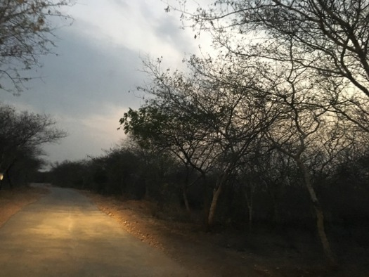 This Weekend Witness the Magnificence of Aravalli Hills!