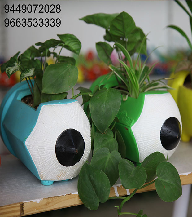 Turn your homes into a Quirky Miniature Garden, Zilpakala