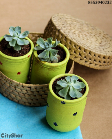 Mud Bottles and Mugs at INR 150, Quriky Planters and More