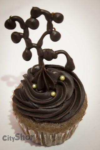 Dharmaja's Cupcakes