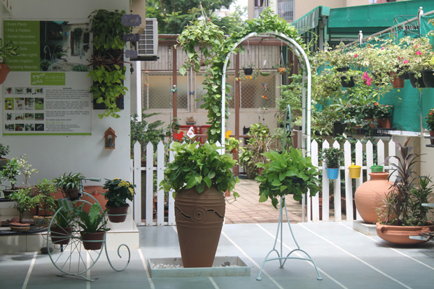 Pots, Plants & much more by HORTUS