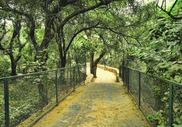 Hunt for Goodies with your Buddies at Cubbon Park
