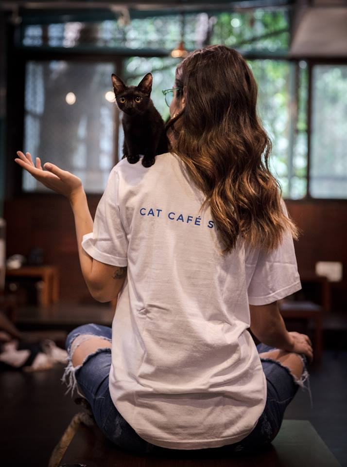 Purr in love at the Speed Dating Night at Cat Café Studio!
