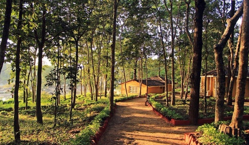 These is the land of Mowgli. A must visit these holidays!