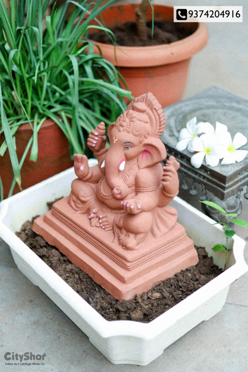 Grow a plant with your ganesh Idol after visarjan by Chakli