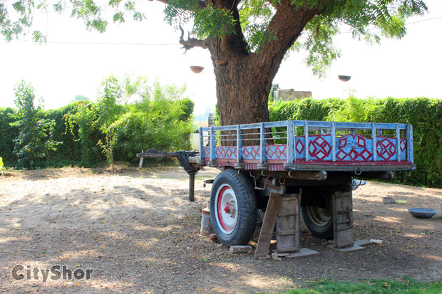 CityShor Travel Diaries - Country Retreat Farmstay