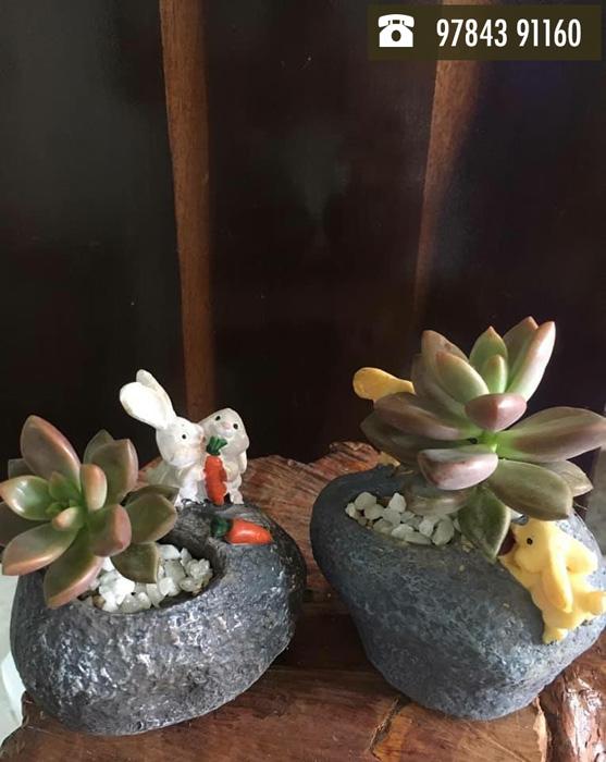 Tiny Wonders.. A Miniature Garden Store