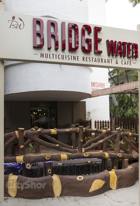 Bridge Water: A Complete Package