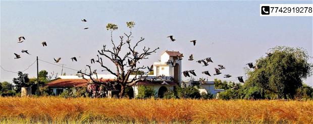 Escape tedious Regimes. Unwind @The Country Retreat Farmstay